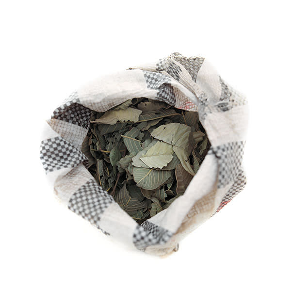 A bag of tanne leaves, used to flavour the bland boiled maize that is the most readily available foodstuff. This bag, bought in a local market, cost CFA Fr50 (about 7p).