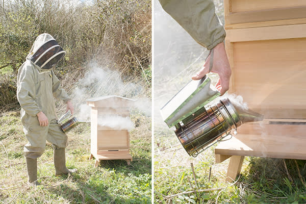 Left: Buttle using a smoker in front of a new hive; Right: A smoker is used to calm the bees