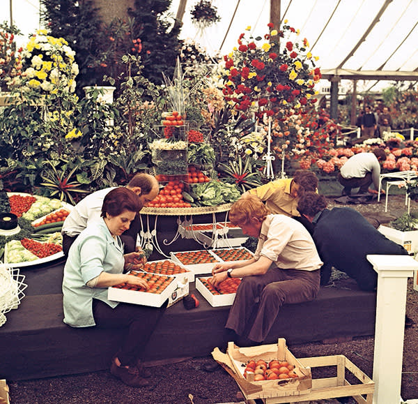 Arranging fruit and vegetables in 1970