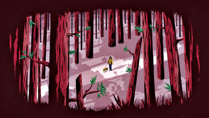 illus of forest