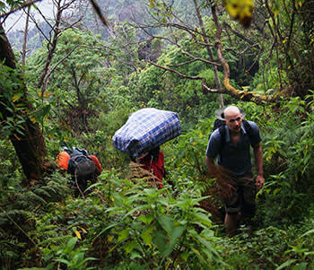 Climbing the jungle trail towards the summit of Nyiragongo