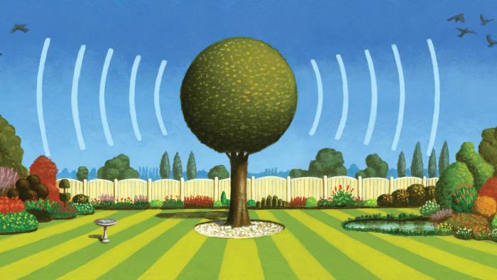 illustration of a garden tree emitting sound waves