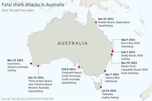 Australia to trial shark deterrent technologies | Financial