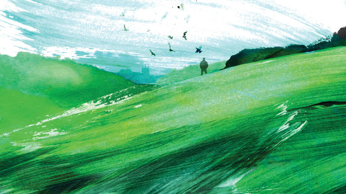 man on a green landscape, with birds flying on the horizon