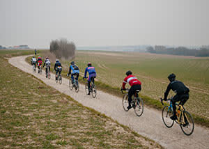 Riders get no cover from the wind amid the unhedged fields of Flanders