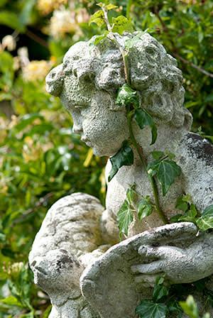 Ivy on a cherub