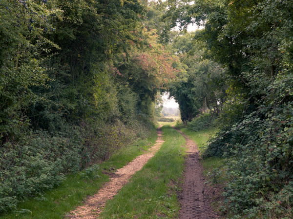 The Bledington route
