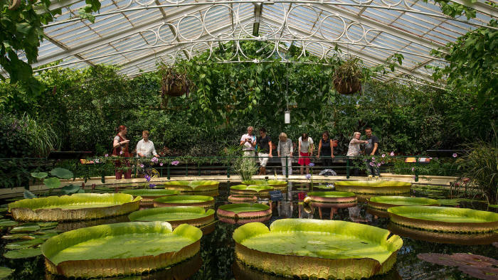 How to fund the world-famous Royal Botanic Gardens at Kew ...