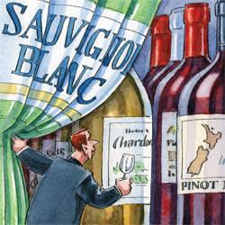 New Zealand wine illustration