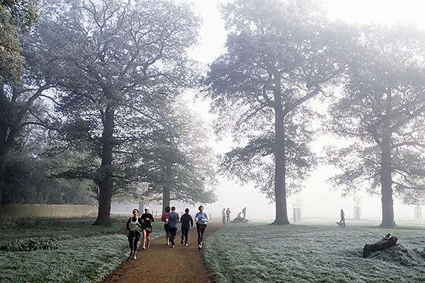 Joggers in Richmond Park, London