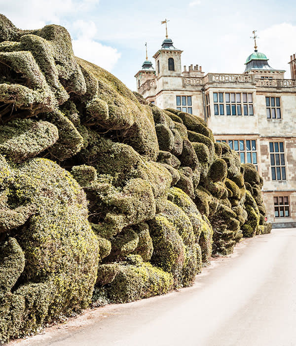 The Cloud Hedge got its shape after being neglected during the second world war