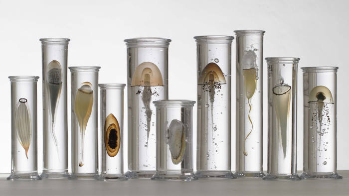 'Group of 10 Jars' by Steffen Dam, £15,000 from Colnaghi