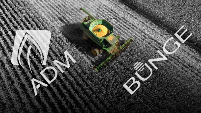 ADM and Bunge sow seeds for grain revival with tie-up talk