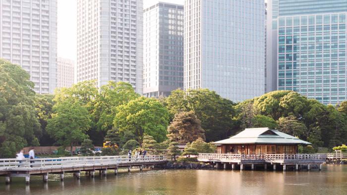 Hamarikyu Gardens, Tokyo. photo essay for Asia-Pacific Innovative Lawyers June 2016