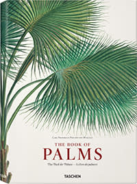 cover of 'The Book of Palms'