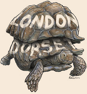 tortoise with two shells, one painted with the word 'Dorset' and one 'London. illustration by James Ferguson