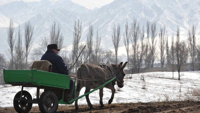 A man rides a donkey cart in front of Ala-Too mountains in the village of Koy-Tash, 15 km outside Kyrgyzstan's capital Bishkek, on March 16, 2014