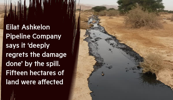 Israel: Oil secrets to spill   Financial Times