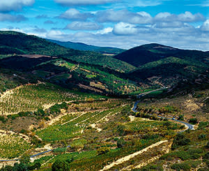 The Corbières region, Languedoc, France