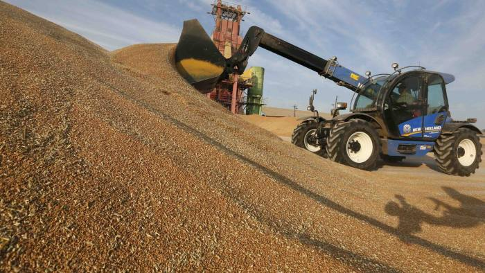Russian agriculture sector flourishes amid sanctions