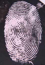 The new type of fingerprint