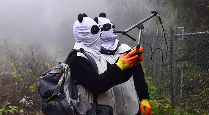 Workers wearing panda masks use a wireless device to detect the location of Yingxue, a panda which has received survival training, at a protection base before reintroducing it to the wild, in Wolong, Sichuan province, China November 20, 2017. Picture taken November 20, 2017. REUTERS/Stringer ATTENTION EDITORS - THIS IMAGE WAS PROVIDED BY A THIRD PARTY. CHINA OUT. TPX IMAGES OF THE DAY