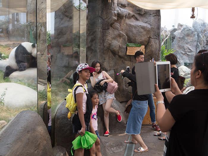 Visitors to the Giant Panda Adventure at Ocean Park, Hong Kong