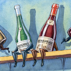 An illustration of wine bottles on a shelf