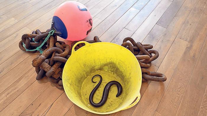 'Untitled (Chain, Rope, Bucket, Buoy, Eels)'