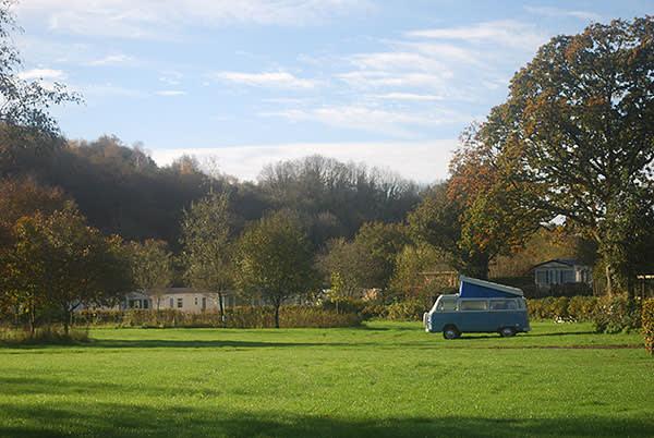 'Wolverine' at Harford Bridge campsite near Dartmoor