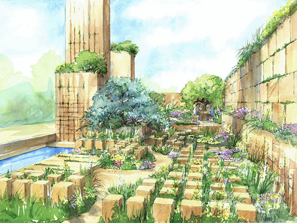 Sketch of James and Helen Basson's garden for this year's Chelsea Flower Show