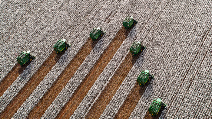 Aerial view of seven combines harvesting cotton
