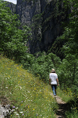 Sophy Roberts hiking at the Vikos Gorge in Greece