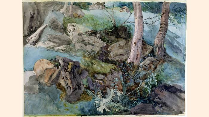 John Ruskin's 'Study of rock and ferns in a wood at Crossmount, Perthshire' (1843)
