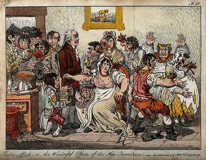 Gilray's portrayl of Edward Jenner vaccinating smallpox paitients