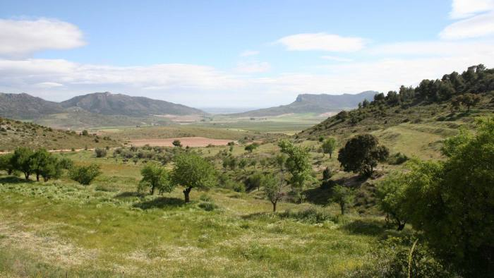 view of the hills near Huescar