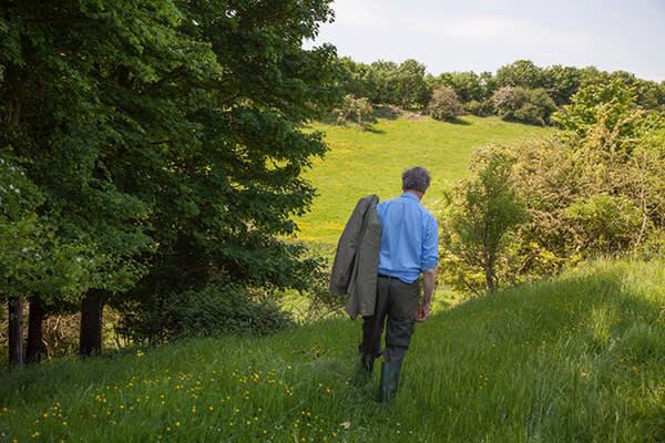 Robin Lane Fox in an Oxfordshire field