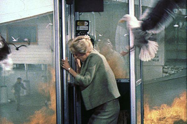 Hitchcock's 'The Birds' (1963)