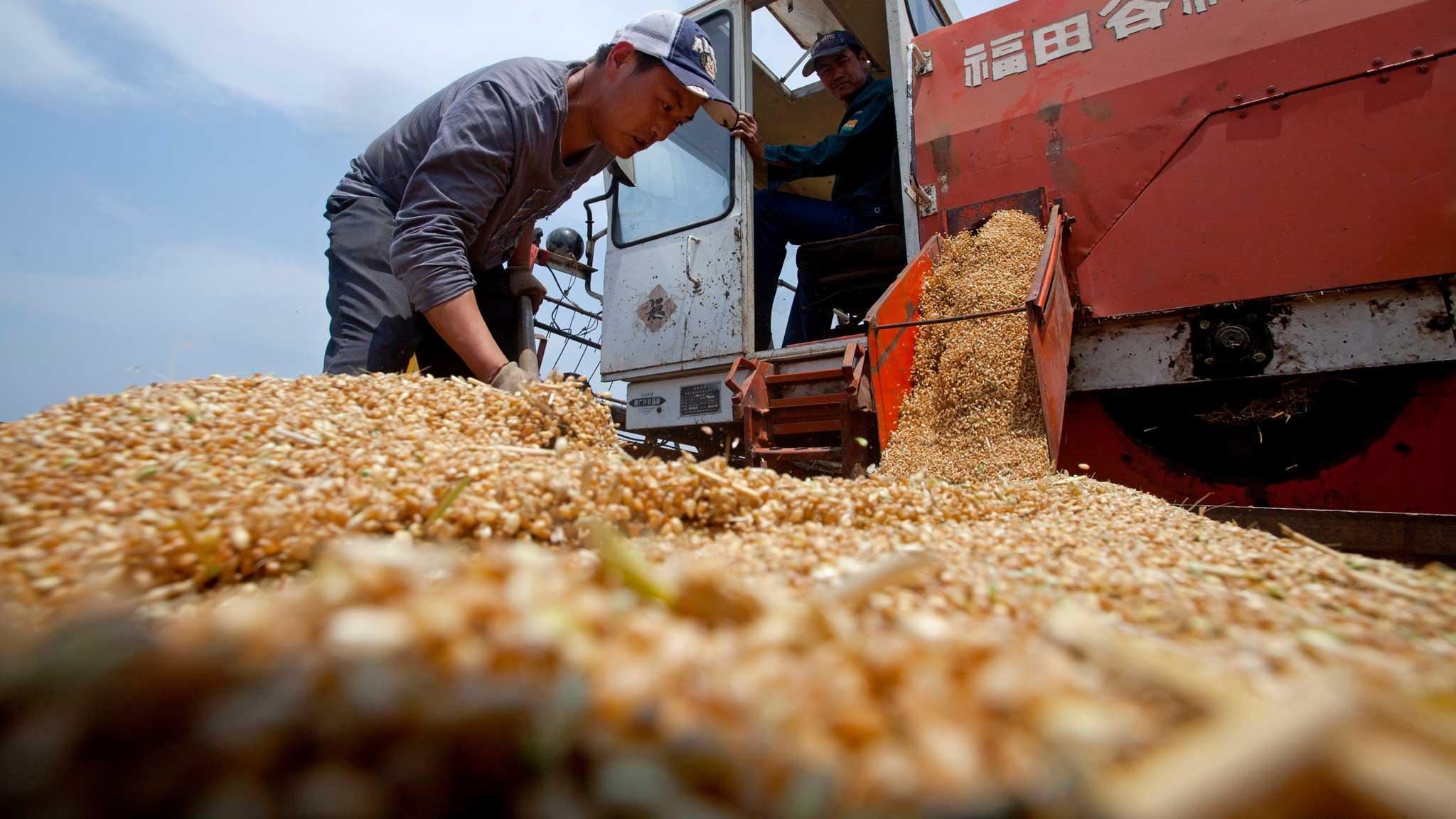 Tough agriculture market spurs trading alliances and ventures | Financial Times