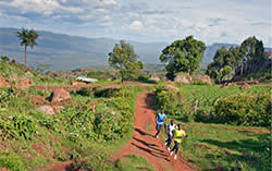 Kenya's long distance runners, based at a high altitude camp in Iten