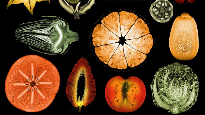 Cross-sections of some of the fruit and vegetables that make for a healthy microbiome, as captured by magnetic resonance imaging (MRI)