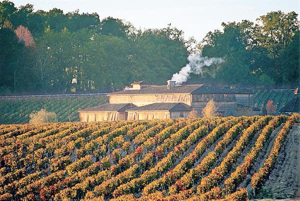 The Caudalie spa set in vineyards in the Bordeaux region