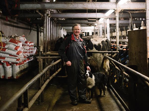 Farmer John Cook in his milking parlour