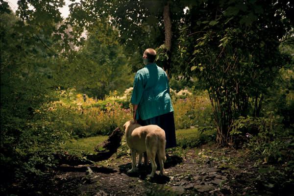 'Andrea' (2008)