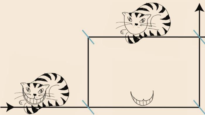 Quantum Cheshire cat