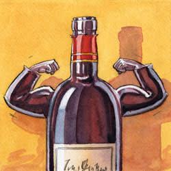 Illustration of fortified wine by Ingram Pinn