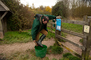 A woodland trust worker disinfects his boots in a wildwood near Ipswich, in the UK
