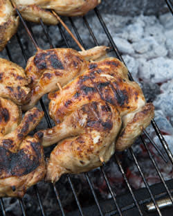 Grilled poussin
