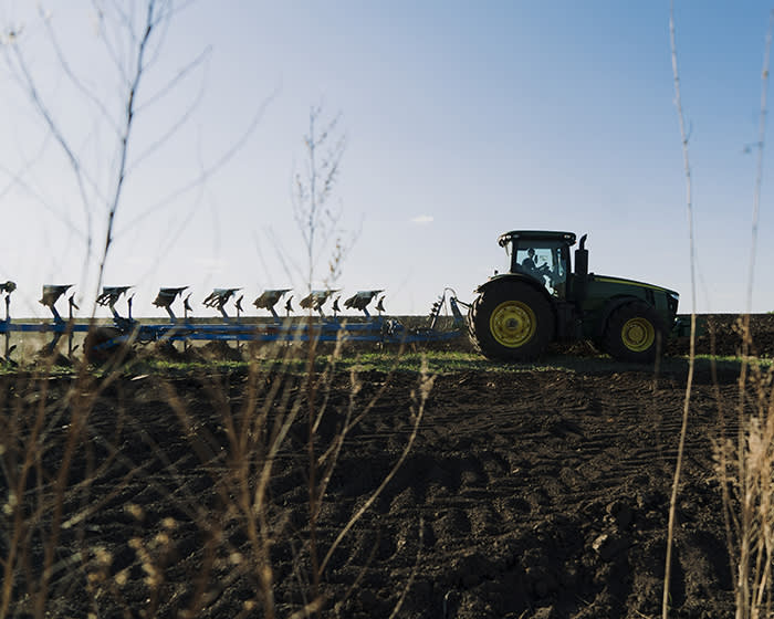 Back to the land: how sanctions transformed Russian farming