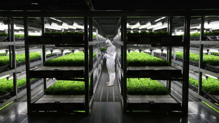 Asia digs deep to upgrade its agriculture | Financial Times